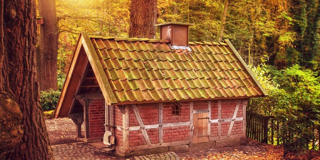 Beroemd Wil je geen groene dakpannen meer? Lees dan verder! FJ91